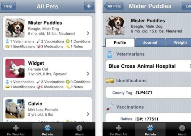 Smartphone Apps for Dog Lovers | Dream Big, Bark Loudly